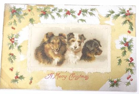 Vintage Holiday Christmas Postcard with dogs