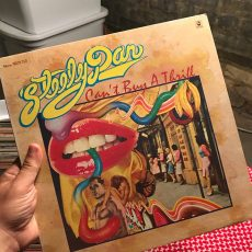 Vinyl Record Sale at Vintage Garage Chicago in June. Steely Dan.